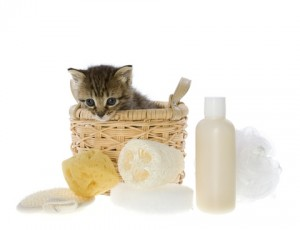 Spa Gift Basket for a Woman