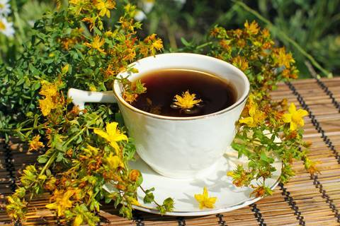 Brew Teas and Herbal Infusions